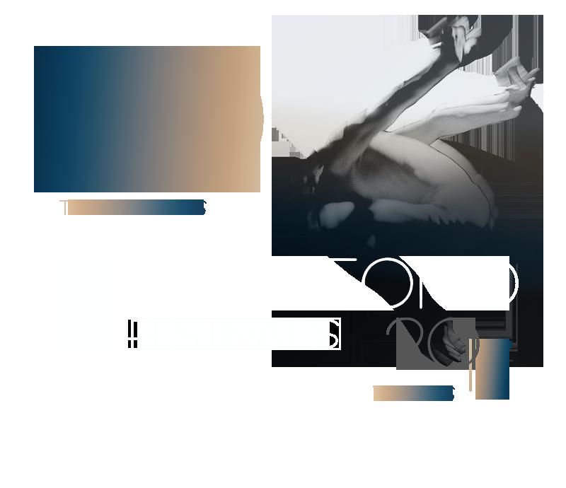 20-asis Tarptautinis Akordeono festivalis VILNIUS 2017